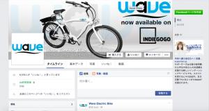 wave erectric bike
