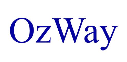 株式会社OzWay